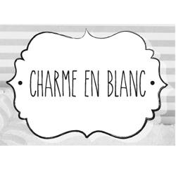 Logo-charme-en-blanc-reasybusy-apartments-laundry-2-thegem-person