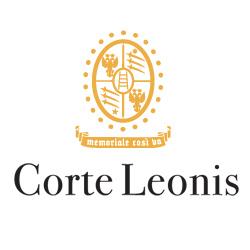 Logo-corteleonis-reasybusy-apartments-laundry-2-thegem-person